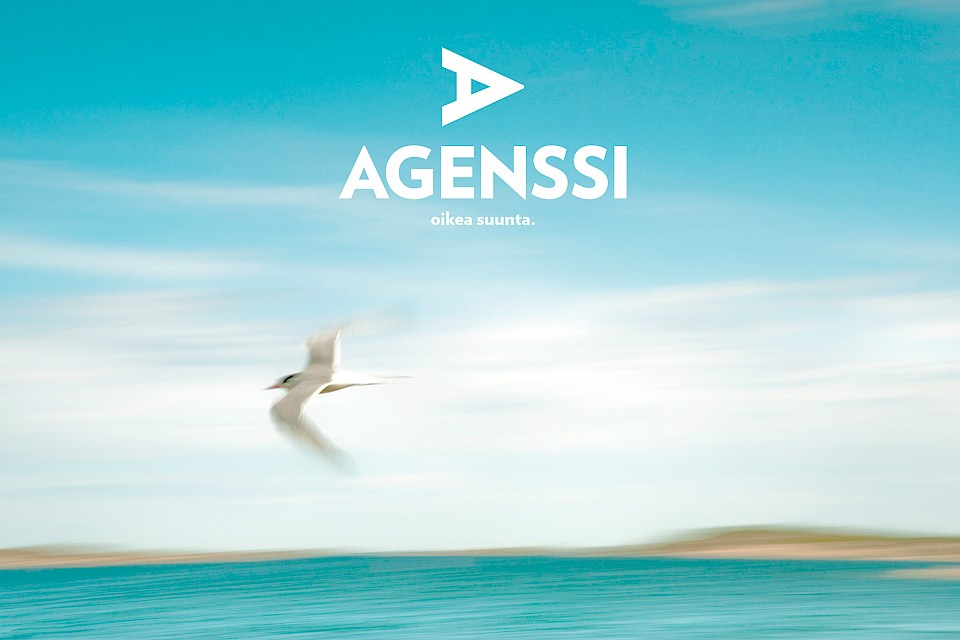 Agenssi: Look & Feel